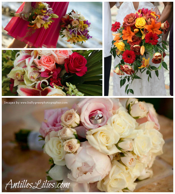 Antilles Lilies St Croix Weddings by Color