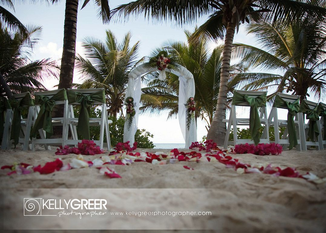 Roses & Orchids Wedding Arch & Petals